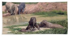 Asian Elephants - In Support Of Boon Lott's Elephant Sanctuary Bath Towel