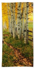 Hand Towel featuring the photograph Aspen Path by Ronda Kimbrow