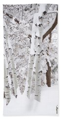 Aspen Snow Hand Towel