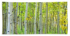 Aspen Tree Forest Autumn Time  Bath Towel