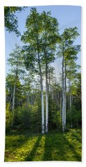 Aspens At Sunrise 1 - Santa Fe New Mexico Bath Towel by Brian Harig