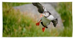 Atlantic Puffin, Incoming.... Hand Towel