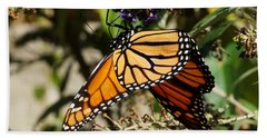 Autumn Butterfly Hand Towel