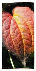 Bath Towel featuring the photograph Autumn Leaf Macro by Brooks Garten Hauschild
