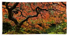Autumn Magnificence Hand Towel by Don Schwartz