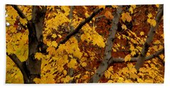 Autumn Moods 21 Hand Towel by Rodney Lee Williams