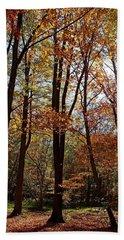 Bath Towel featuring the photograph Autumn Picnic by Debbie Oppermann