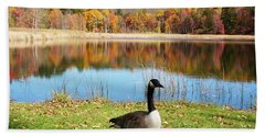 Hand Towel featuring the photograph Autumn Pond Goose by Aimee L Maher Photography and Art Visit ALMGallerydotcom