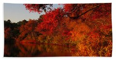 Autumn Splendor  Hand Towel by Dianne Cowen