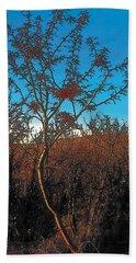 Autumn Bath Towel by Terry Reynoldson