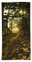 Autumn Trail In Woods Hand Towel