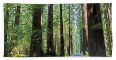 Avenue Of The Giants Hand Towel by Heidi Smith