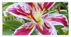Bath Towel featuring the photograph Awakening Asiatic Lily by Steven Huszar