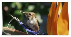 Baby Hummingbird On Flower Bath Towel