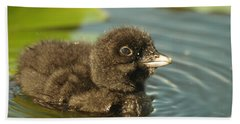 Bath Towel featuring the photograph Baby Loon by James Peterson