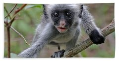 Baby Red Colobus Monkey Hand Towel