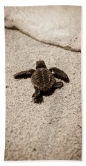 Bath Towel featuring the photograph Baby Sea Turtle by Sebastian Musial