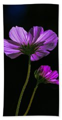 Hand Towel featuring the photograph Backlit Blossoms by Marty Saccone