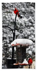 Backyard Winter Wonderland 2  Bath Towel
