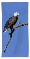 Bald Eagle 4 Hand Towel