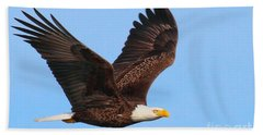 Bald Eagle In Flight Hand Towel