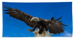Bald Eagle Hand Towel by Scott Carruthers