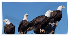 Bald Eagles Quartet Hand Towel