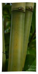 Hand Towel featuring the photograph Bamboo II by Robert Meanor
