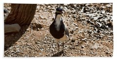Banded Lapwing Hand Towel by Douglas Barnard