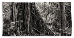 Strangler Fig And Cypress Tree Hand Towel