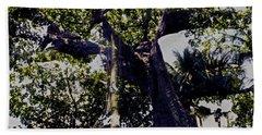 Banyan Wider Canopy Hand Towel