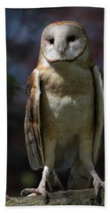 Bath Towel featuring the photograph Barn Owl by Dale Kincaid