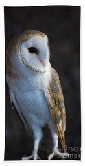 Barn Owl Bath Towel by Sharon Elliott
