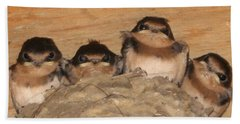 Barn Swallow Chicks 2 Hand Towel