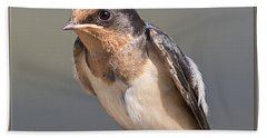 Hand Towel featuring the photograph Barn Swallow On Rope I by Patti Deters