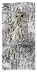 Barred Owl Snowy Day In The Forest Bath Towel by Jennie Marie Schell