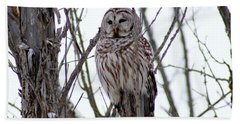 Bath Towel featuring the photograph Barred Owl by Steven Clipperton