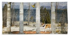 Barren Shoreline Hand Towel by Liane Wright