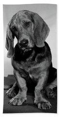Basset Hound Puppy Looking Sad Head Bath Towel