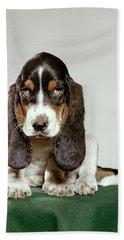 Basset Hound Puppy With Soulful Sad Bath Towel