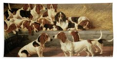 Basset Hounds In A Kennel Hand Towel