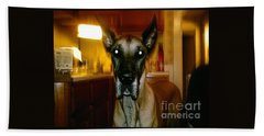 Hand Towel featuring the photograph Batdog Duke by Kelly Awad