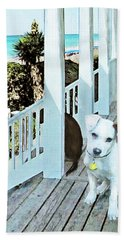 Beach Dog 1 Hand Towel by Jane Schnetlage