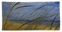 Beach Grass On A Sand Dune At Glen Arbor Michigan Hand Towel