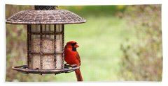 Beautiful Cardinal Hand Towel