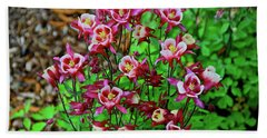 Beautiful Columbine   Hand Towel by Ed  Riche