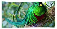 Beautiful Quetzal 4 Bath Towel