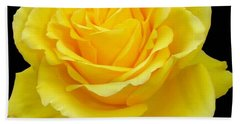 Beautiful Yellow Rose Flower On Black Background  Bath Towel by Tracey Harrington-Simpson