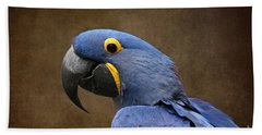 Beauty Is An Enchanted Soul - Hyacinth Macaw - Anodorhynchus Hyacinthinus Hand Towel