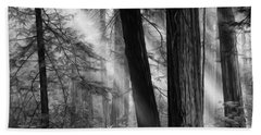 Beauty Of California Redwoods 4 Monochrome Hand Towel